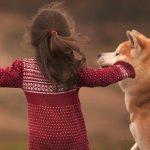 Cadouri pentru iubitorii de animale