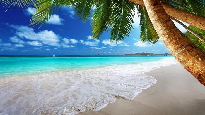 Geanta de plaja.