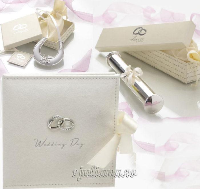 Suport pentru certificat de nunta, potcoava argintata cu verighete si album foto Wedding Day