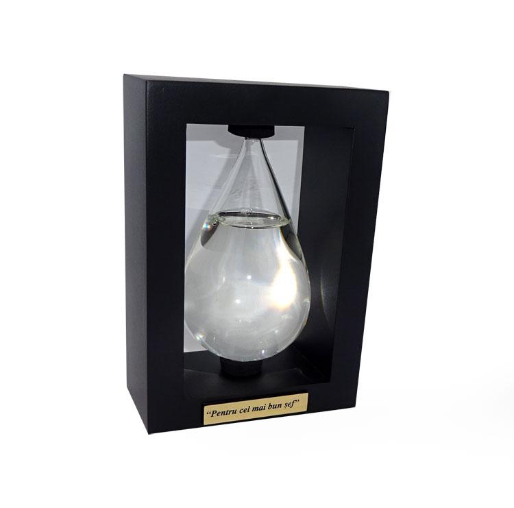 Sticla Furtunii cadou personalizat pentru sef